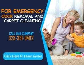 Sofa Cleaning Company - Carpet Cleaning West Hollywood, CA