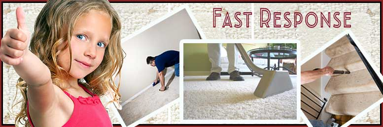 Carpet Cleaning West Hollywood, CA | 323-331-9402 | Steam Clean